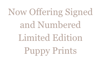 Now Offering Signed and Numbered